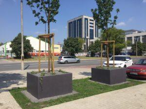 Warszawa, biurowiec – donice
